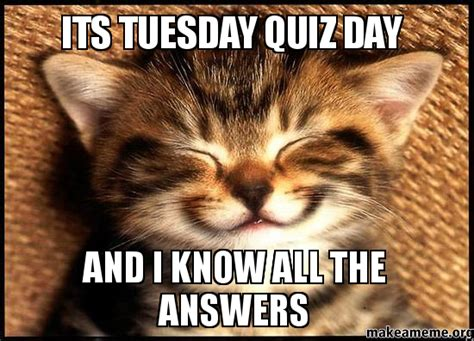 Quiz Meme - its tuesday quiz day and i know all the answers make a meme