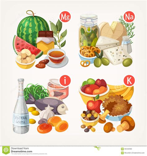 vegetables w vitamin d products rich with vitamins and minerals stock vector