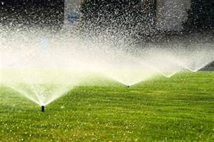 lawn irrigation how much and how often do you need to