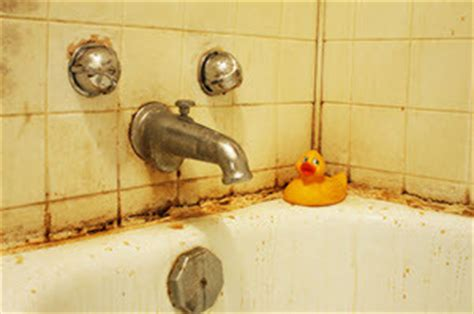 how to deal with mold in bathroom how to get rid of mold mildew in the bathroom