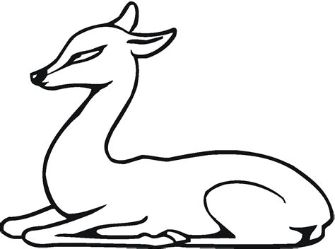 Free Coloring Pages Of Deer And Fawn Fawn Coloring Pages