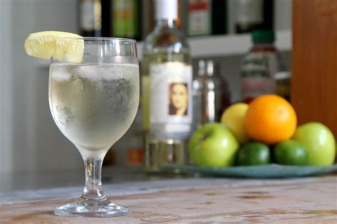 how to make a wine spritzer 6 steps with pictures wikihow
