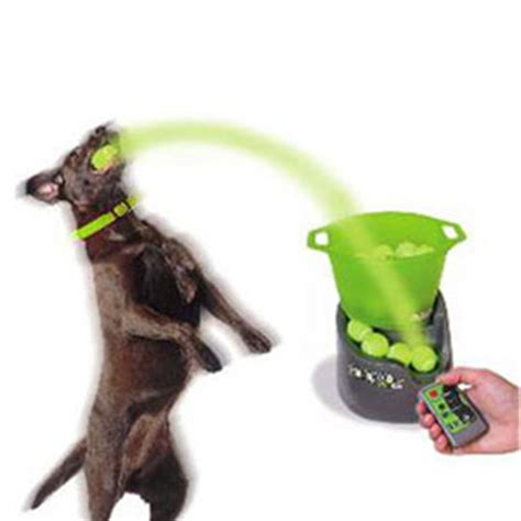 launcher for dogs godoggo remote fetch automatic tennis launcher for dogs the green