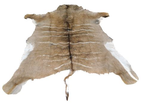 how to make a deer skin rug faux deer skin rug home design ideas
