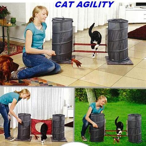 Jouet Pour Chaton Fait Maison by Jouet Chat Cat Agility Tapis Et Jouets D 233 Veil Morin