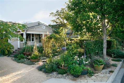 southern backyard southern california landscaping santa barbara ca