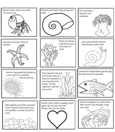 A House For Hermit Crab Lesson Plans A House For Hermit Crab By Eric Carle Sequencing Text Structure Texts Hermit Crabs And Pictures