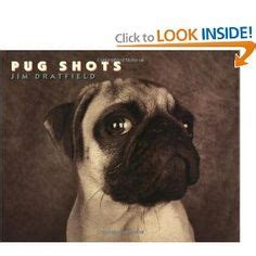 pug festival california books worth reading on pugs clara barton and yeller
