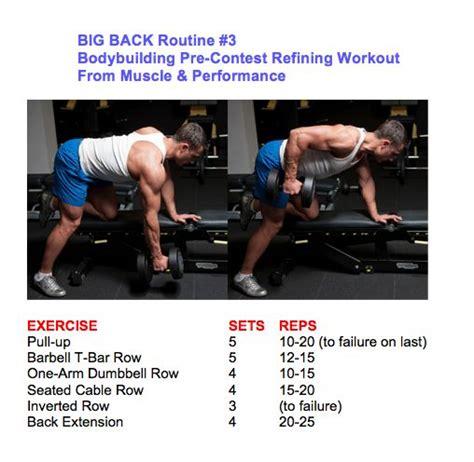 oberkörpertraining zu hause ohne geräte die 25 besten big back workout ideen auf