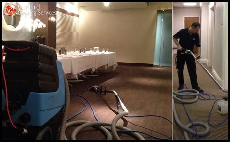 upholstery cleaning charlotte carpet cleaning charlotte sunbird cleaning services
