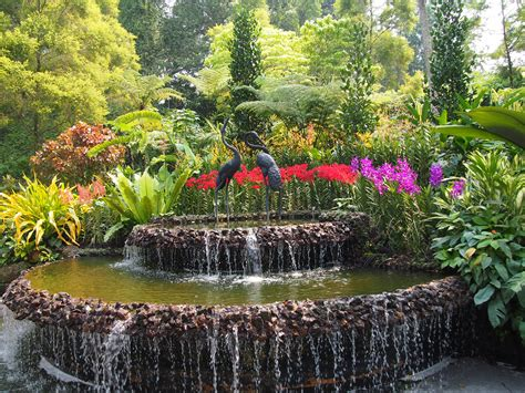 Botanic Garden Top 5 Must Visit Places In Singapore Asian Inspirations