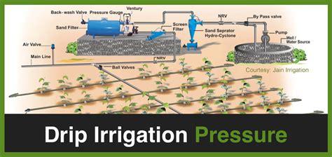 pressure   drip system  savy gardener