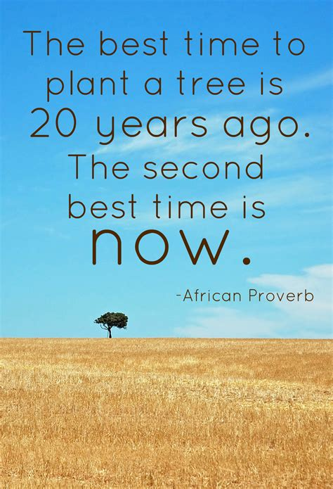 famous quotes  tree sualci quotes