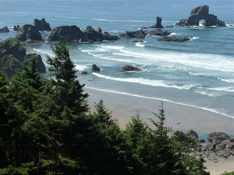 quot not all those who wander are lost quot ecola state park