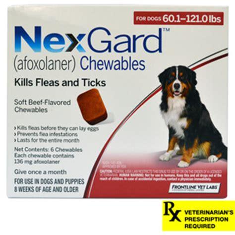 nexgard for dogs 60 120 lbs flea tick medication frontline plus advantage 2 advantix for pets lambert vet