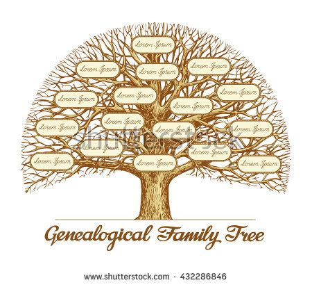Genealogical Tree Stock Images Royalty Free Images Vectors Shutterstock Vintage Family Tree Royalty Free Stock Images Image 32018779