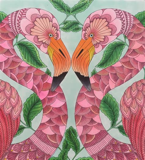 libro millie marottas tropical wonderland millie marotta tropical wonderland flamingos learning to use copic markers dibujos