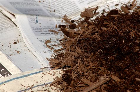 How To Make Paper Mulch - garden mulch types when and how to use them
