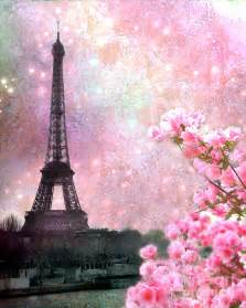 Background desktop pink sunset paris besides gorgeous pink rose flower