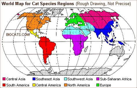 where do jaguars live in south america cat species by world regions
