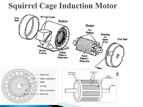 squirrel cage rotor induction motor electric motors