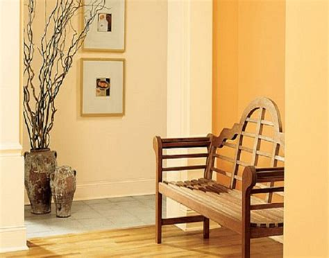 best orange interior paint colors ideas behr interior
