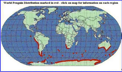 where do penguins live map librarianism chronicles penguins