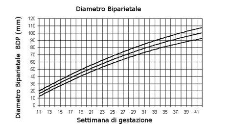 misure gestazionale il fantastico mondo delle mamme lunghezze fetali valori