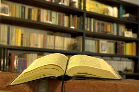 antes que anochezca biblioteca 10 bibliotecas que visitar antes de morir planeta curioso