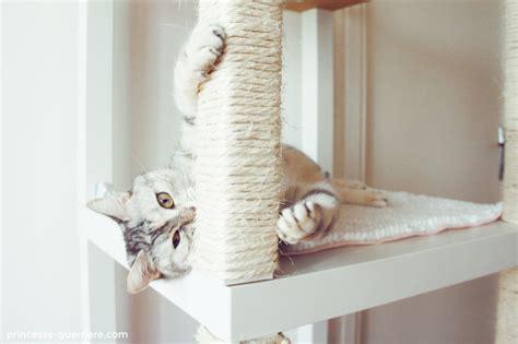 Stylish Cat Furniture diy un arbre 224 chat ikea