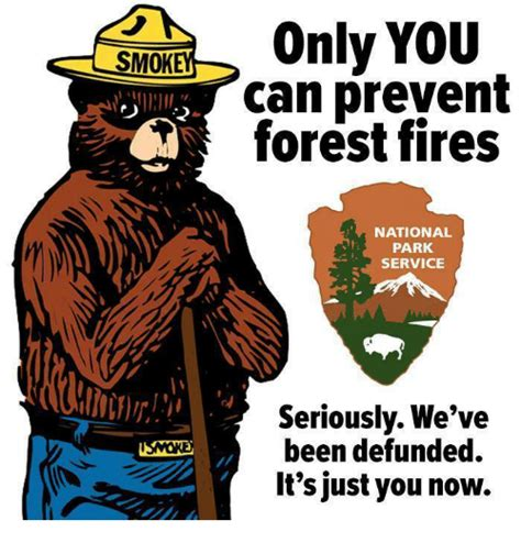 Only You Can Prevent Forest Fires Meme - 25 best memes about only you can prevent forest fires