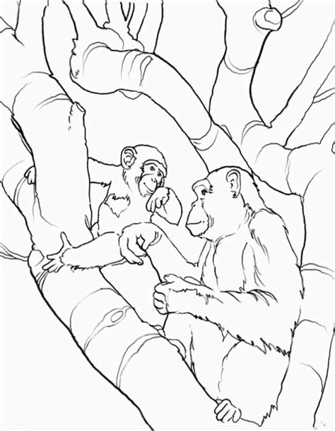 coloring book yahoo answers colouring page i need a picture of a monkey hanging from