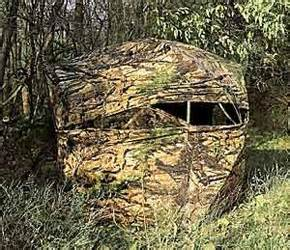 best archery ground blind bull archery blinds