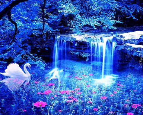 labedz wodospad jeziorko kwiatki
