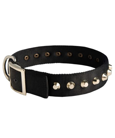 awesome collars exclusive collar with awesome nickel cones collar info