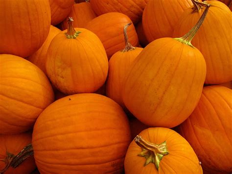 pumpkin pictures for it s that time again my 2014 3d pumpkin carving tools