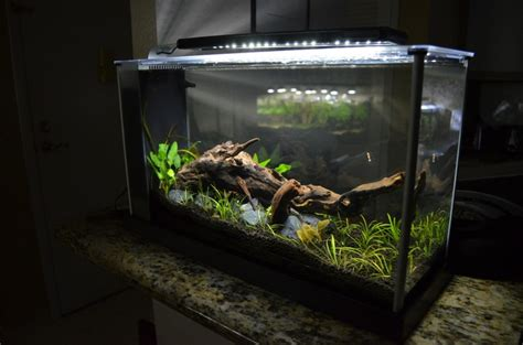 Fluval Spec V Aquascape by Fluval Spec V Aquascape Aquariums