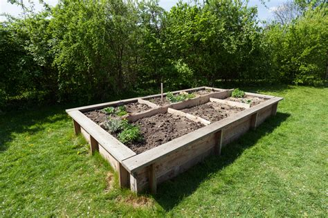 build  raised garden bed planning building