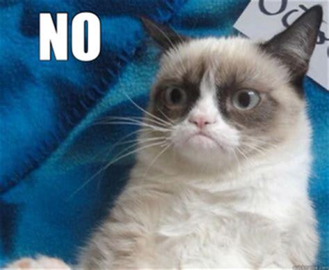 No Meme - grumpy cat no memes quickmeme