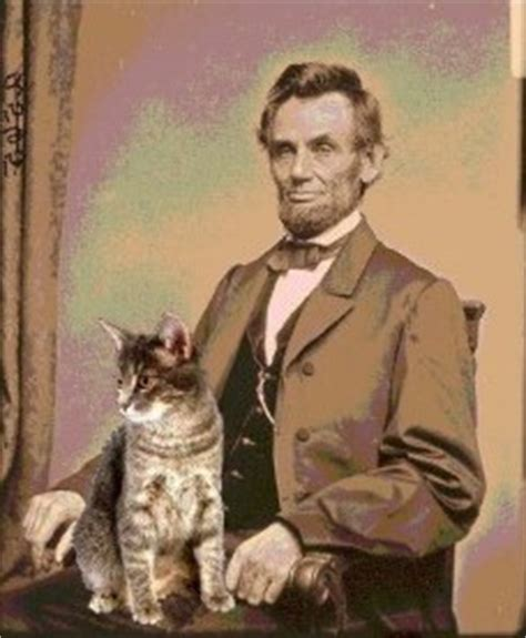 cat house lincoln abraham lincoln 16th president was the first president to bring a cat into the