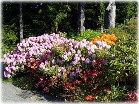 sitnews labor of the leland gardens