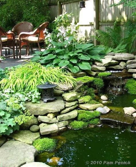 backyard ponds waterfalls pictures 25 best ideas about coy pond on pinterest koi ponds
