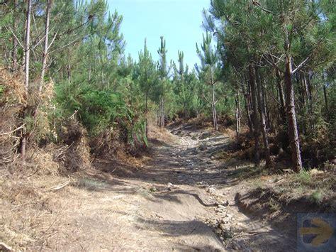 camino de santiago forum serra da labruja camino de santiago forum