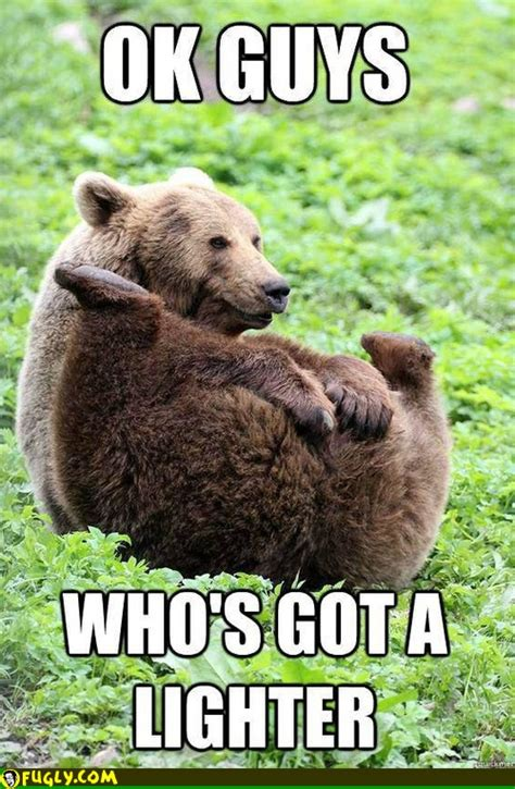 Truth Bear Meme - bear lighting his farts fugly