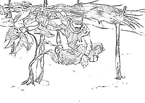 jonah vine coloring page jonah coloring pages and activities coloring pages