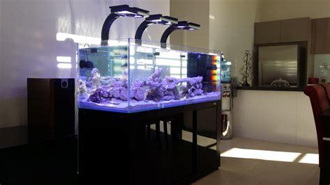 biotek marine radion xr30 acrylic mounting arms aquanerd