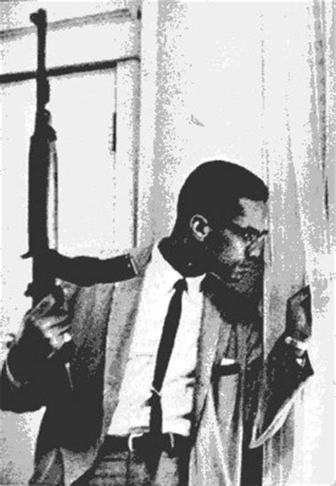 malcolm x reagan mr flamm s website