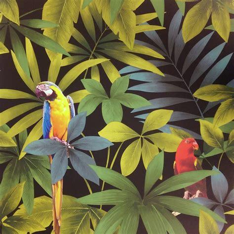 leaf pattern wallpaper uk direct rainforest jungle songbird parrot leaf pattern