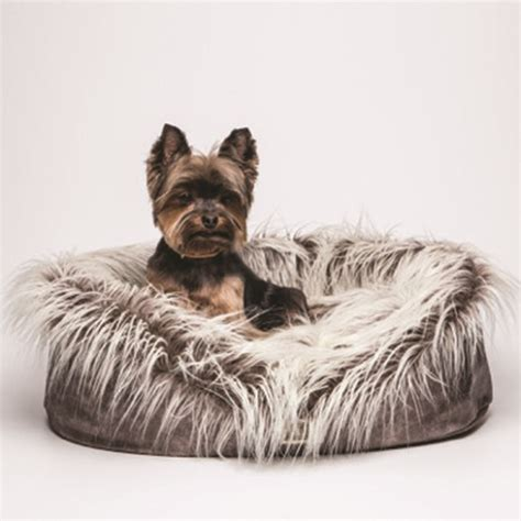best bed for yorkie yorkie beds yorkie designer bed pawsdeluxe
