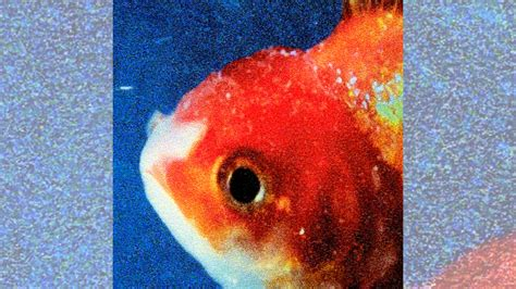 vince staples big fish theory rimas e batidas